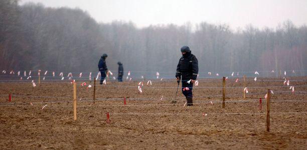 EOD:n asiantuntijat etsivät miinoja marraskuun lopussa Medvedivkan kylässä Vinnytsian alueella.