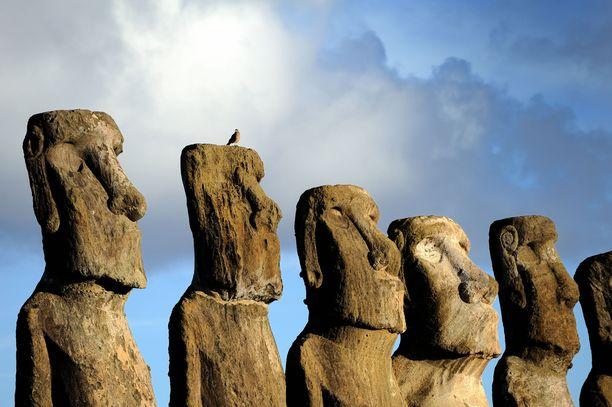 Patsaita on saarella 887 ja uusimman tutkimuksen mukaan ne osoittavat juomakelpoisen veden suunnan.