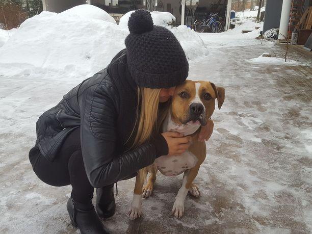 Culo-koira on kokenut lentokonematkustaja, koska se asuu Emilia Tuukkasen ja tämän poikaystävän kanssa Espanjassa ja käy välillä Suomessa. Tällä kertaa Culolla oli kuitenkin kova hinku ulos korista ja pihalle.