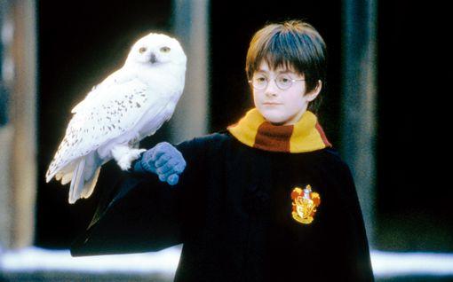 """Daniel Radcliffe keksi haaveammattinsa Harry Pottereita tehdessä: """"Olen kiitollinen"""""""