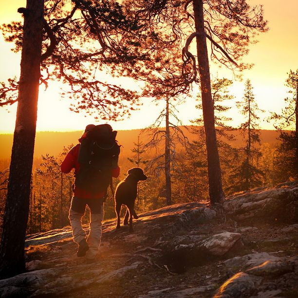 Syksyinen Suomi tarjoaa mainioita mahdollisuuksia luonnossa liikkumiseen.