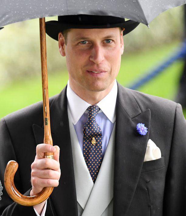 Prinssi William tapasi kansaa omalla ajallaan, sillä juttutuokio ei kuulunut hänen työtehtäviinsä. Kuva kesäkuulta.
