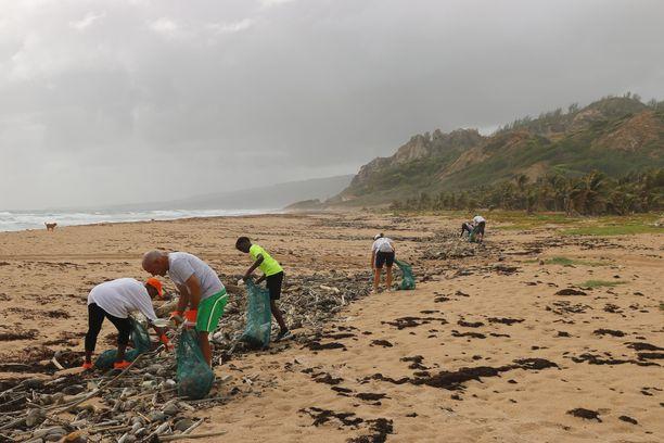 Vapaaehtoismatkalla voi päätyä vaikkapa rantoja raivaamaan.