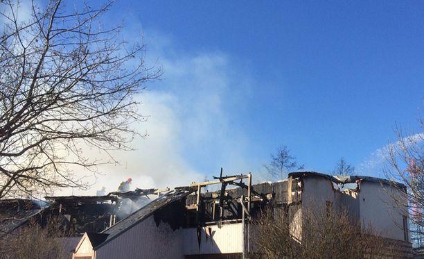 Helsingin Suutarilassa tapahtunut tulipalo ei vaatinut kuolonuhreja.