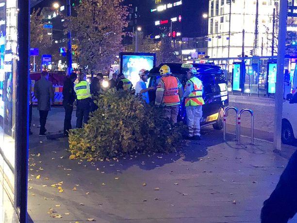 Puu kaatui törmäyksen seurauksena, vaikka ajonopeus ei ollut kova.