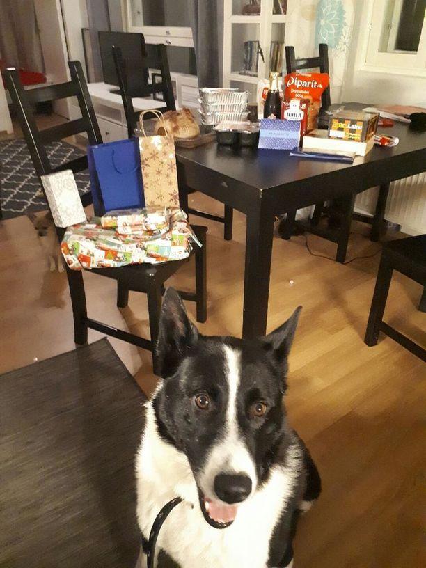 Nyt Riku-koirakin pääsee ehkä maistamaan kinkkua jouluna.