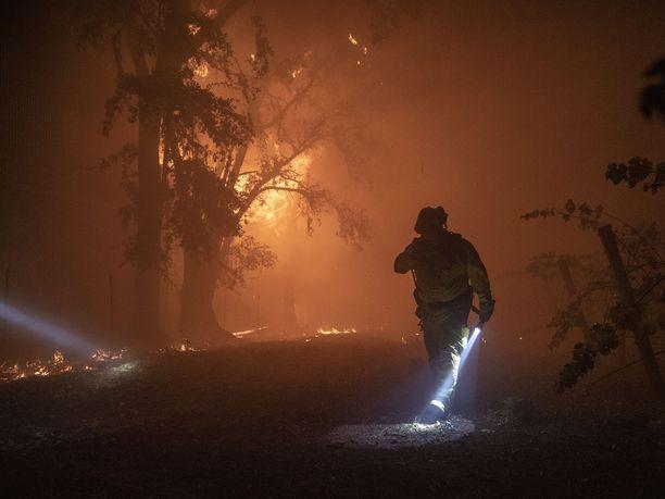 Kaliforniaan on julistettu hätätila osavaltiossa roihuavien laajojen maastopalojen vuoksi.