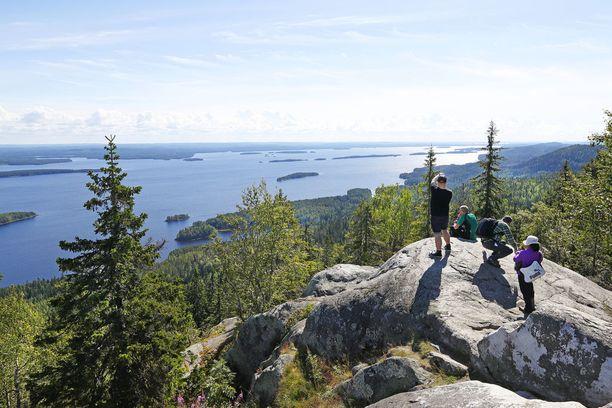 Kotimaan matkailun suosio on nousussa. Varsinkin luontokohteet, kuten kuvan Koli, kiinnsotavat.