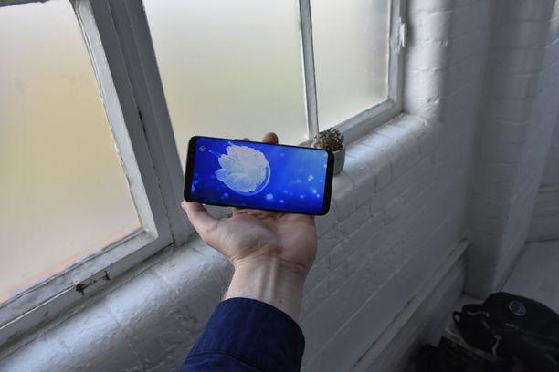 Samsungin maaliskuun lopussa julkistaman puhelimen hinta lähtee 829 eurosta. Syksyllä julkistettavan uuden Iphonen lähtöhinta lienee huomattavasti korkeampi.