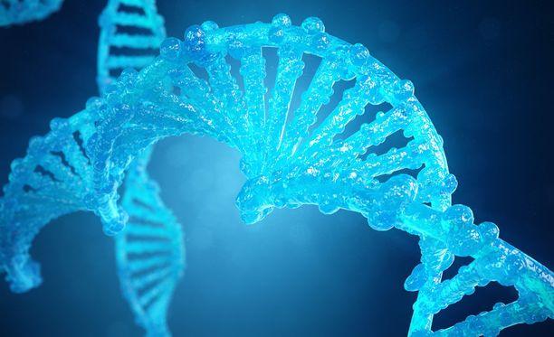 3D-mallinnos muunnellusta DNA-kierteestä.