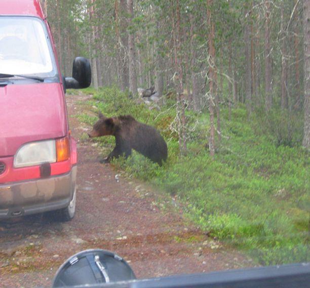 Uhkaavasti käyttäytynyt karhu ei poistunut pihapiiristä hätistelyistä huolimatta.