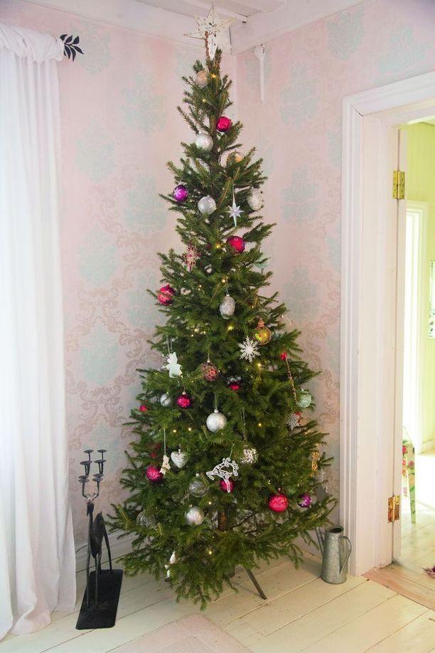 Joulukuusia on ainakin yksi, ja se koristellaan jo hyvissä ajoin ennen joulua.