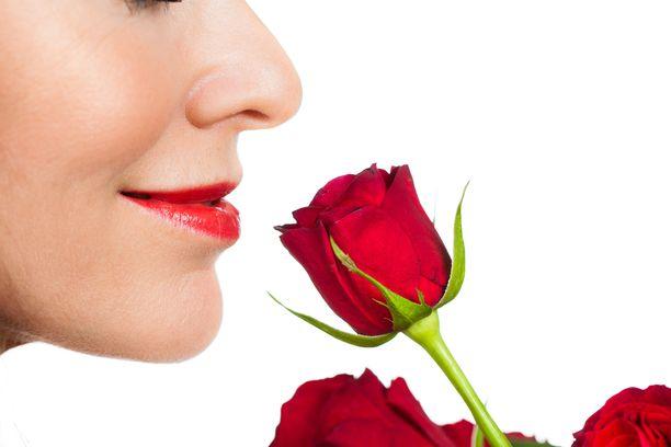Niinkin hyvä tuoksu kuin ruusun tuoksu voi herättää voimakkaan tunteen, joka voi saada aikaan pahoja unia.