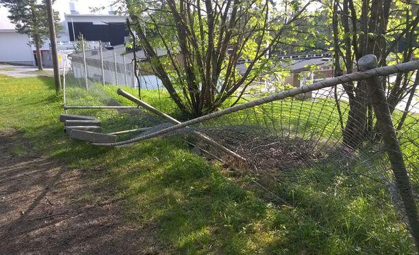 Nuoret repivät maauimalaa ympäröivää verkkoaitaa maahan noin 10 metrin matkalta.