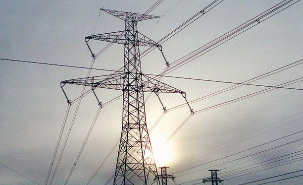 Yhtiö muistuttaa, että sähkölinjoille kaatuneita puita ei saa omin voimin raivata.