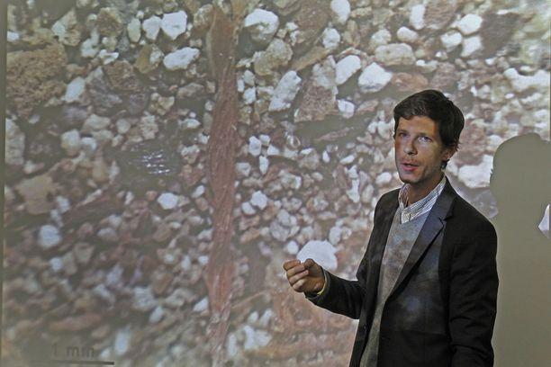 Philippe Charlier on yksi tutkijoista, jotka vuonna 2013 analysoivat Englannin kuninkaan Rikhard Leijonamielen sydämen (kuvassa) jäänteet. Arkistokuva.