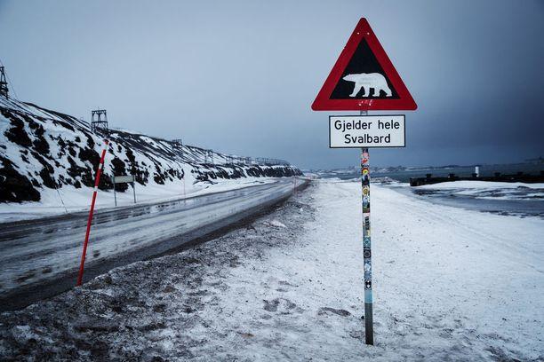 Sään ääri-ilmiöt eli toisinaan hyvin runsaslumiset ja toisinaan vähälumiset talvet tulevat jatkossa lisääntymään, Ilmatieteen laitos kertoo. Arkistokuva Norjan huippuvuorilta.