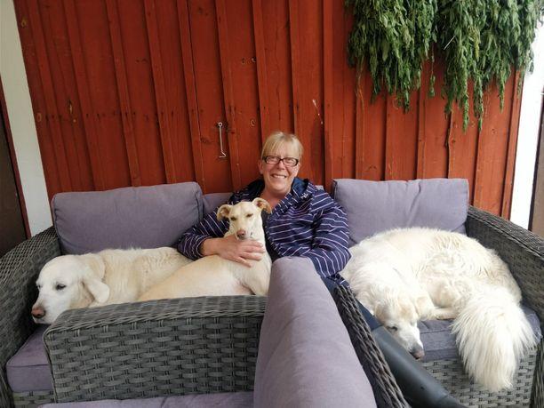 Rivissä sohvalla Lucky, Kössi, Susanna-emäntä ja Tyyppi.