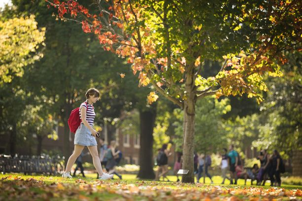 Macalester Collegen kampus Yhdysvaltain Minnesotassa on syksyisen kaunis.