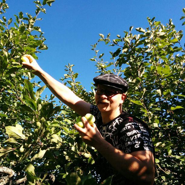 Mika Laitinen kotipihansa omenapuussa.