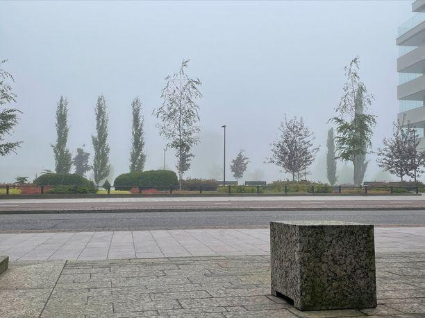 Puiden takana pitäisi näkyä Finlandia-talo, vaan ei näy. Kuva otettu hieman aamukymmenen jälkeen lauantaina.