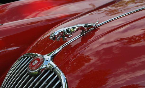 Jaguarilla ajellut nuori mies hurjasteli Lahdessa. Kuvituskuva.
