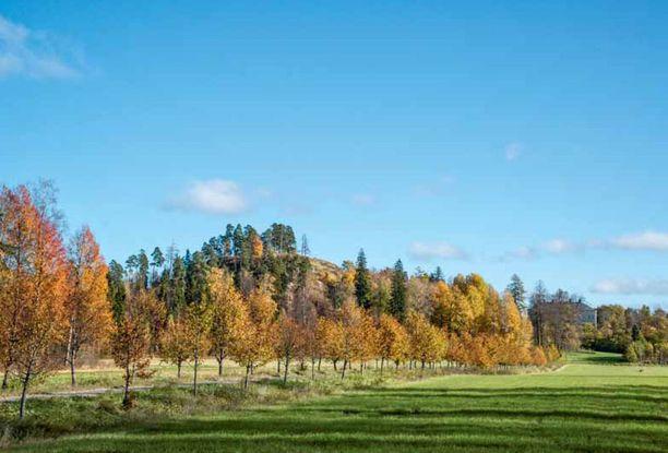 Suomen tunnetuimpia muinaisjäännöksiä on Hakoisten keskiaikainen linnavuori Janakkalassa.