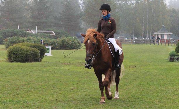 Raviuransa jälkeen Pettestä koulutettiin ratsuhevonen. Kuvassa ratsastajana oli Niina Jokikokko.