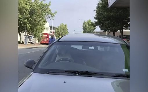 Malttamaton koira herätti huomiota – kutsui äänekkäästi torvella australialaismiestä auton etupenkiltä