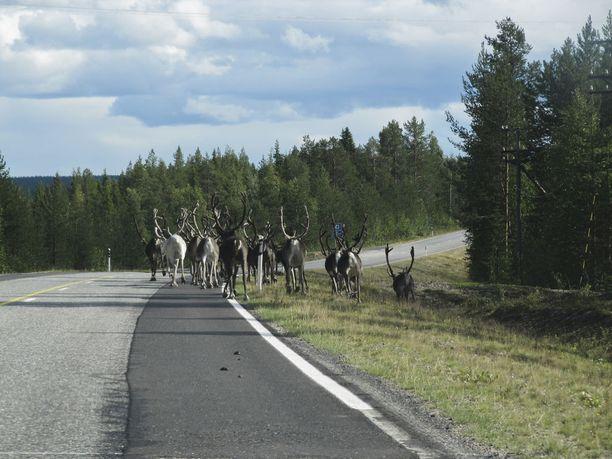 Ensi viikolla sää suosii Suomen Lapissa...