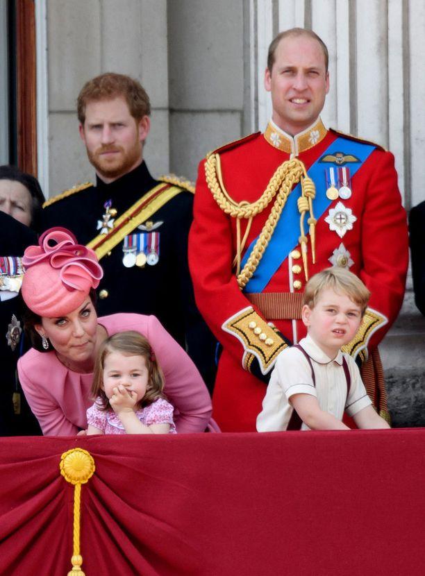 Kuvassa prinssi Harry ja Wlliam kesän alussa.