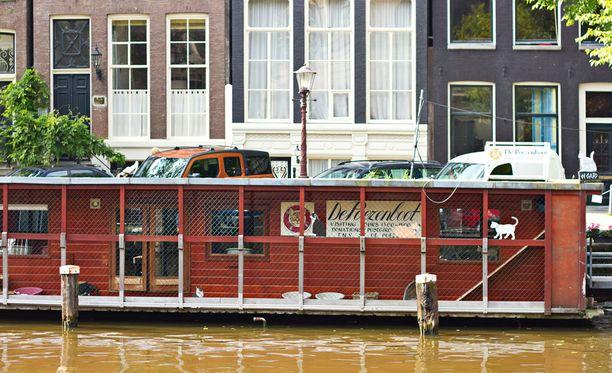 Poezenboot on kelluva löytäkissojen asuntola.