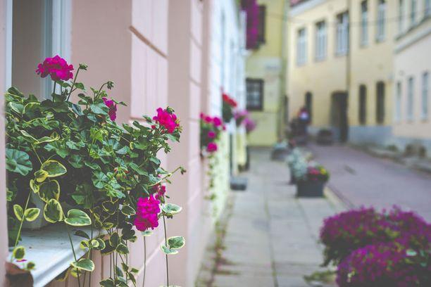 Vanhankaupungin rakennukset edustavat montaa erilaista akkitehtonista tyylisuuntaa.