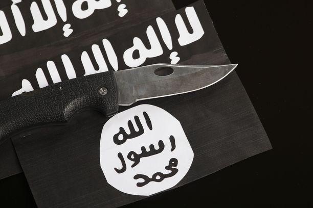 Järjestön propagandakoneisto on vaimentunut kalifaatin kukistumisen ohella.