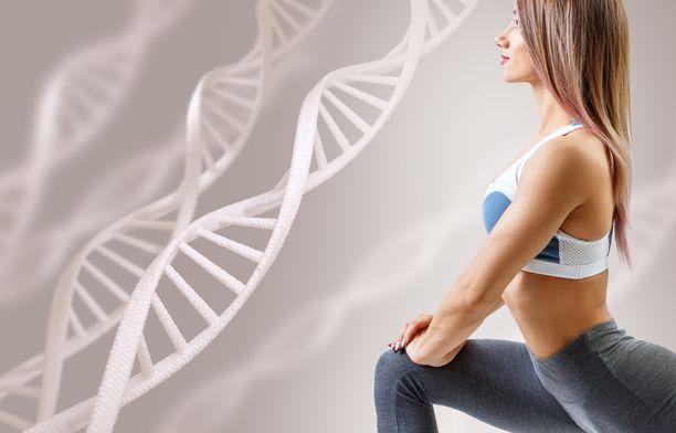 Perimän on jo aiemmin arveltu vaikuttavan elimistön kykyyn käyttää rasvaa.