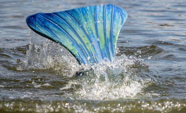 Merenneitopyrstöjä voi tilata netistä erivärisinä ja kokoisina.