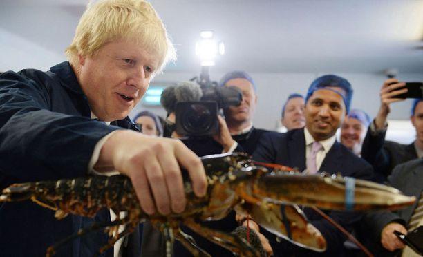Boris Johnson nousisi Brexitin tapahtuessa pääministeriksi, arvioivat asiantuntijat.