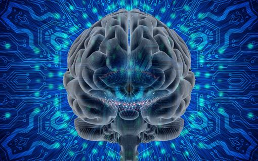 Käsittämättömin fysiikan teoria ikinä? Aivojen kvantti-ilmiöt saattavat selittää tietoisuuden