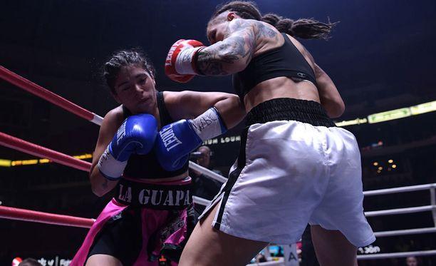 Eva Wahlström otti Mayra Gomezista pistevoiton WBC-liiton MM-ottelussa.