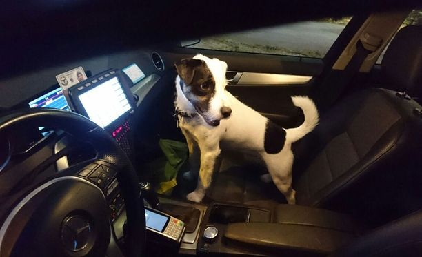 Loppu hyvin kaikki hyvin! Turuntiellä juoksennellut koira saatiin kiinni ja turvallisesti takaisin omistajalleen.