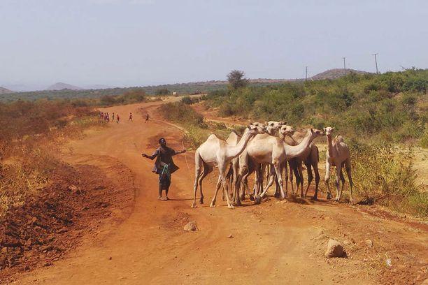 Reissun huonoimmat tiet olivat Keniassa. Vaaratilanteita aiheuttivat muun muassa kamelit sekä juoksentelevat lapset.