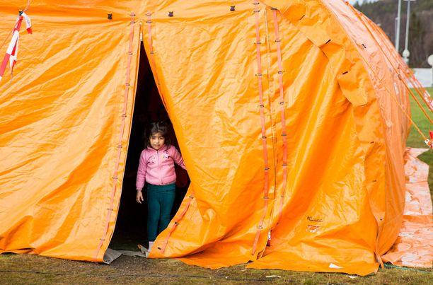 Pakolaistyttö kurkisteli teltastaan Kirkenesissä.