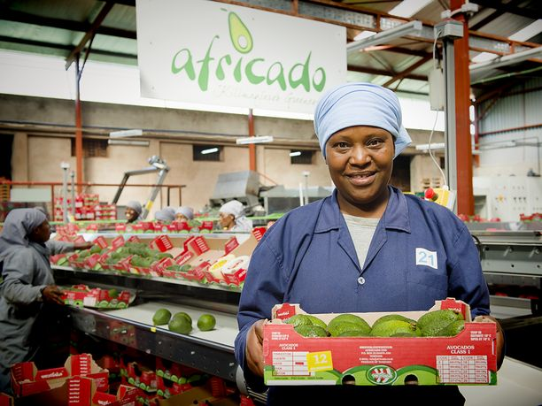 Suomen valtion pääosin omistama kehitysrahoittaja Finnfund on rahoittanut avokadojen viljelyä Tansaniassa. Vastuullisesti kasvatetut avokadot tuodaan kauppoihin Eurooppaan.