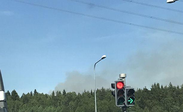 Palopaikka sijaitsee rinteessä Mustasaaren metsäalueella.