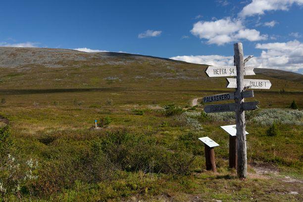 Pallas- ja Yllästunturien maisemat houkuttelevat vuosittain yli puoli miljoonaa kävijää.