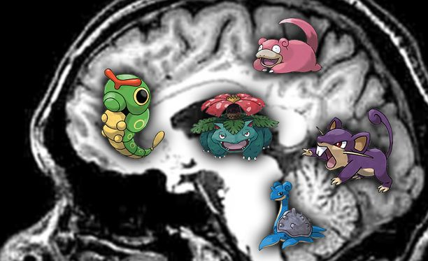 Pokemonit säilyvät aivoissa pitkään.