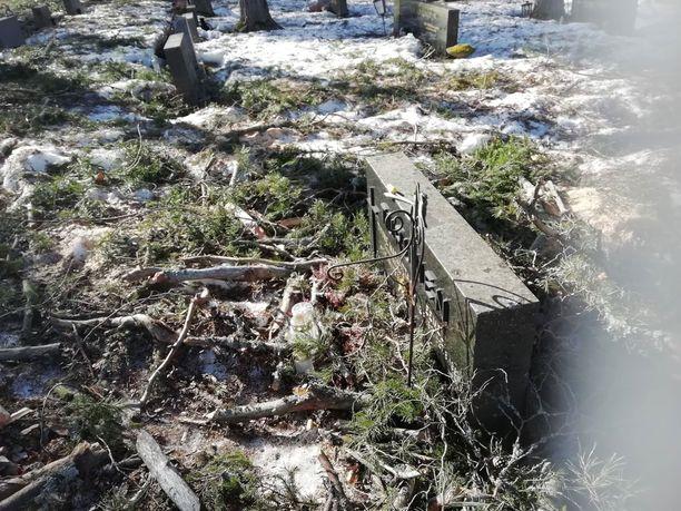 Seurakunnan mukaan puista tippuvat oksat olivat vaaraksi hautausmaalla käyville ihmisille.