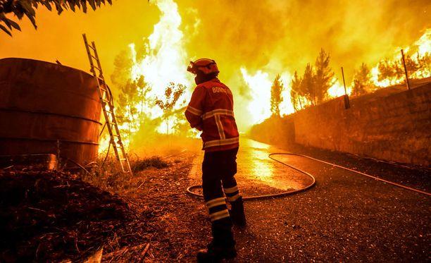 Kuva on otettu sunnuntaina Pampilhosa da Serrassa, Keski-Portugalissa.