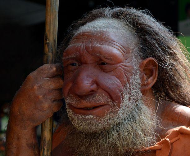 Mettmannissa sijaitsevalla museolla on kenties maailman tunnetuin neandertali-ihmisen jäljennös näyttelyssään. Nyt sitä odottaa uusi pigmentti.