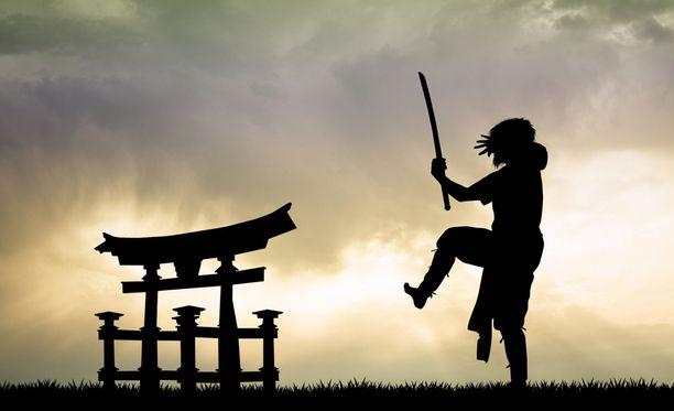 Japanissa ninjoilla on vuosisatoja kestänyt historia. Ninjat olivat feodaalisessa Japanissa salamurhaajia ja vakoojia, jotka toimivat palkkasotureina.